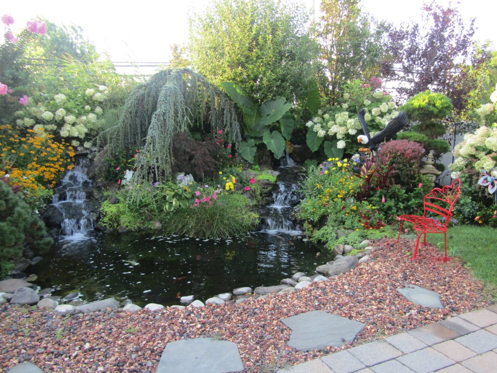 Hewlett Waterfalls & Ponds From Paccione Landscaping