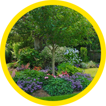 Paccione & Sons Long Island landscaping services icon.